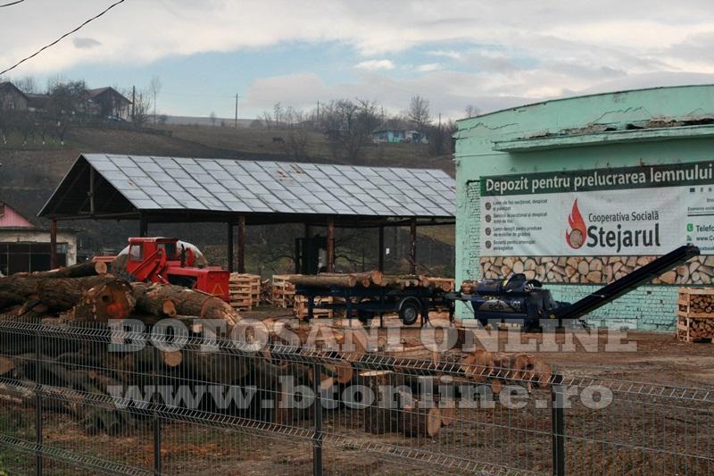 Pomarla, proiect economie sociala, lemn de foc (35)