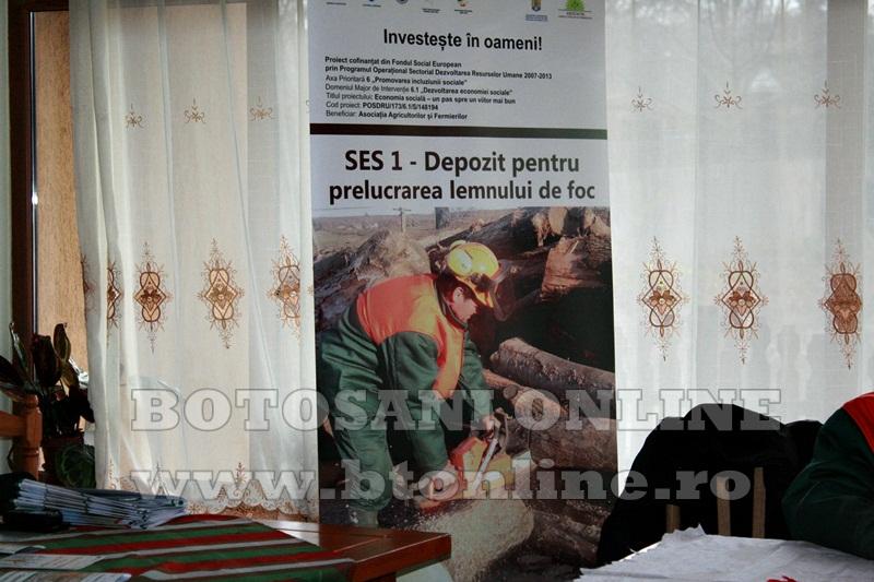 Pomarla, proiect economie sociala, lemn de foc (7)