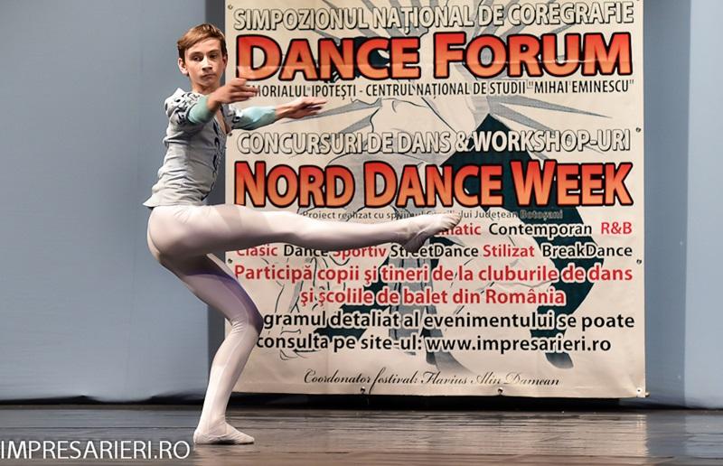 concurs balet ARLECHIN - Botosani  (24)