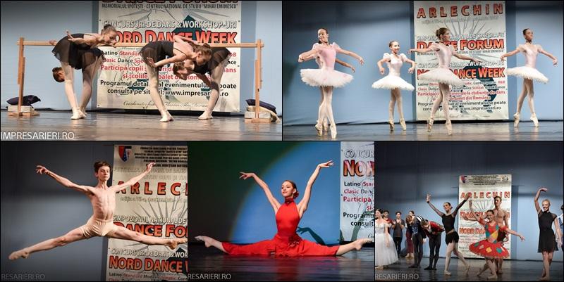concurs balet ARLECHIN - Botosani