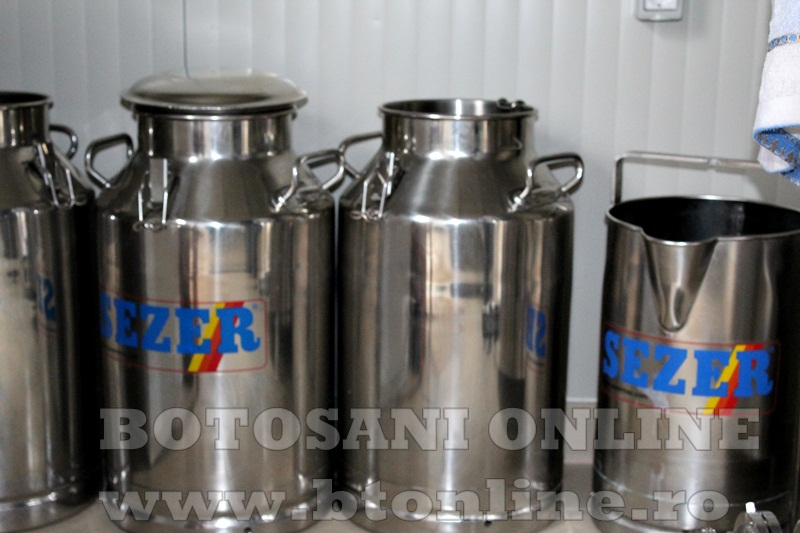 Vlasinesti, centru de colectare a laptelui (3)