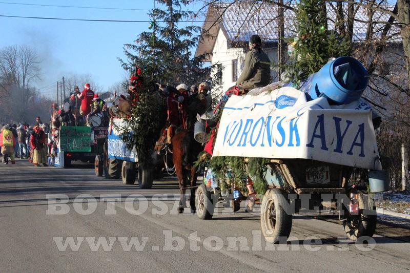 Vorona, traditii, datini si obiceiuri 31 decembrie 2015  (1)