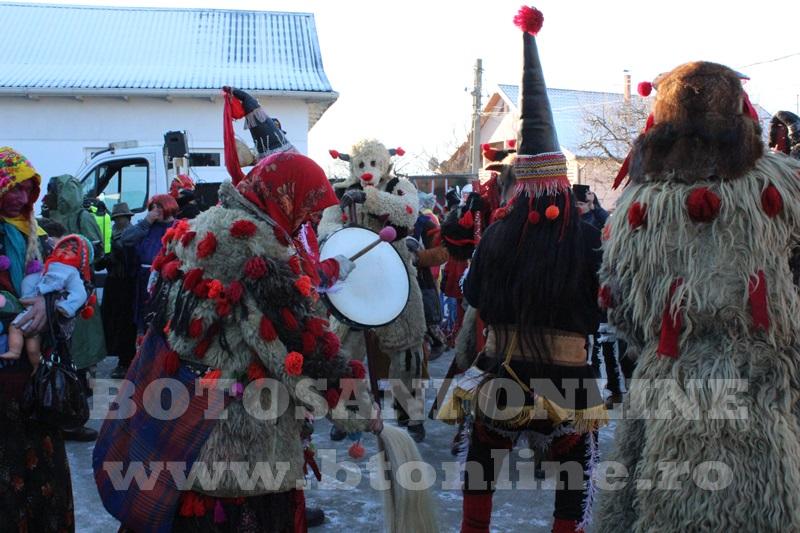 Vorona, traditii, datini si obiceiuri 31 decembrie 2015  (16)