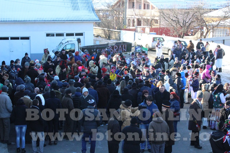 Vorona, traditii, datini si obiceiuri 31 decembrie 2015  (24)