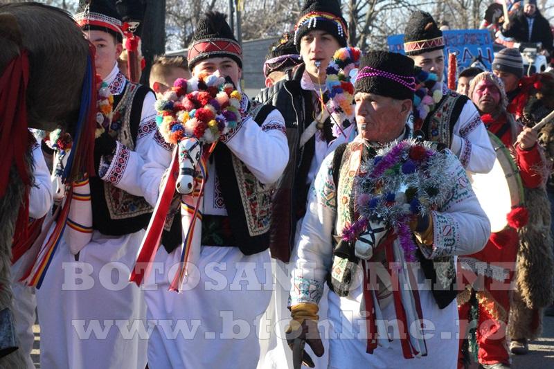 Vorona, traditii, datini si obiceiuri 31 decembrie 2015  (37)