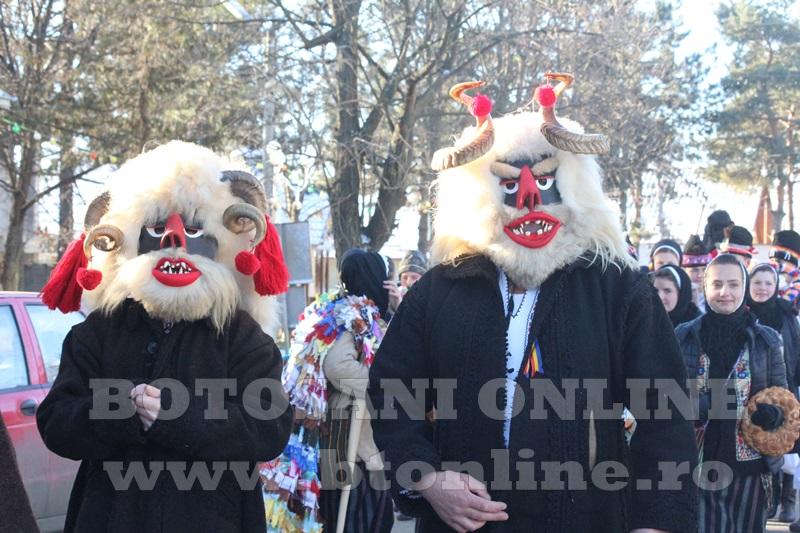 Vorona, traditii, datini si obiceiuri 31 decembrie 2015  (39)