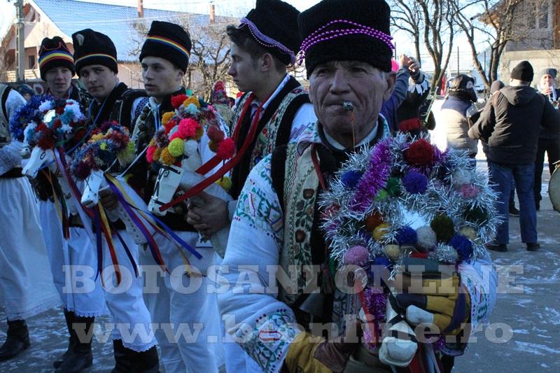 Vorona, traditii, datini si obiceiuri 31 decembrie 2015  (9)