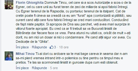 facebook ghiorghita, tincu