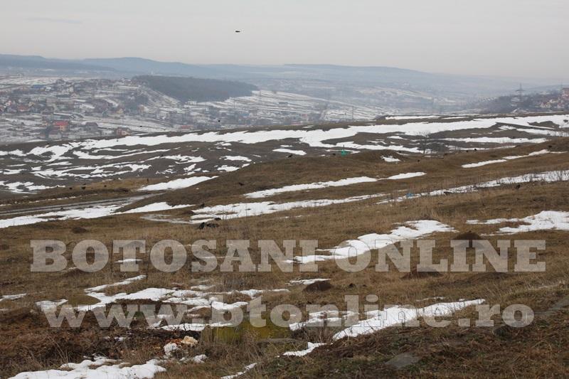 teren zona alfa land (11)