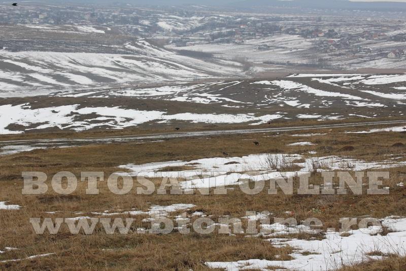 teren zona alfa land (7)