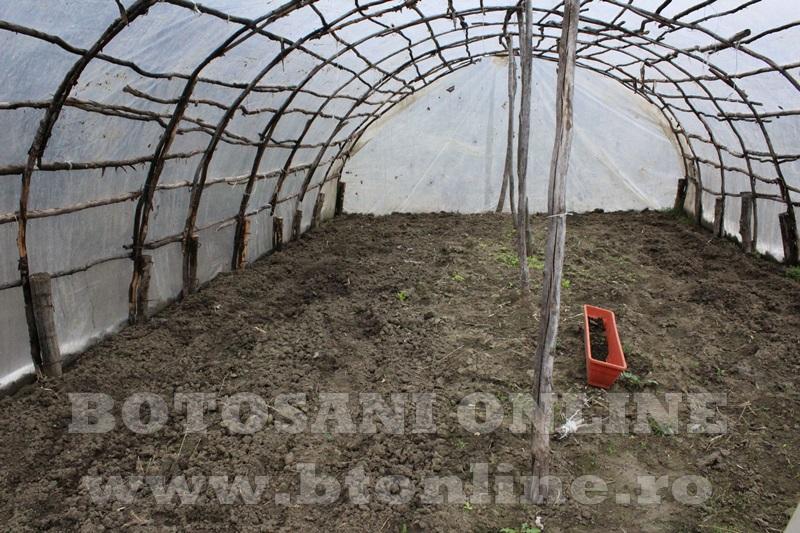 Hiliseu, solarii, legumicultori  (19)