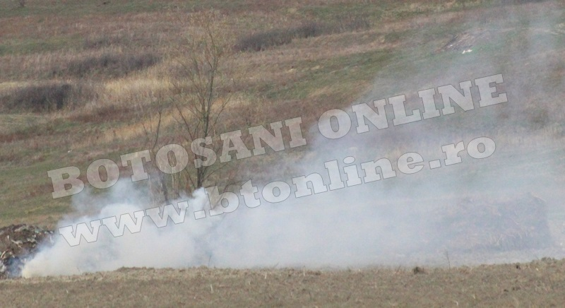 incendiu de vegetatie uscata (2)