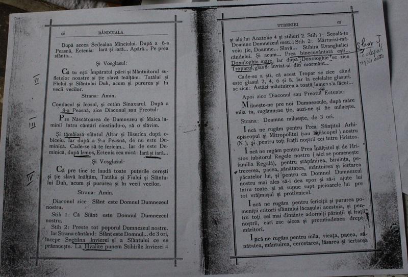 sf ioan iacob, paltinis (23)