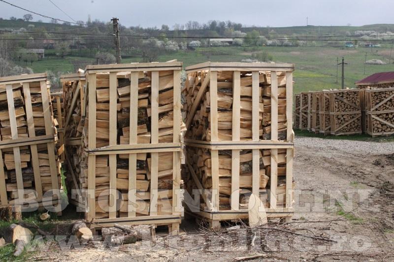 pomirla, lemn de foc (1)
