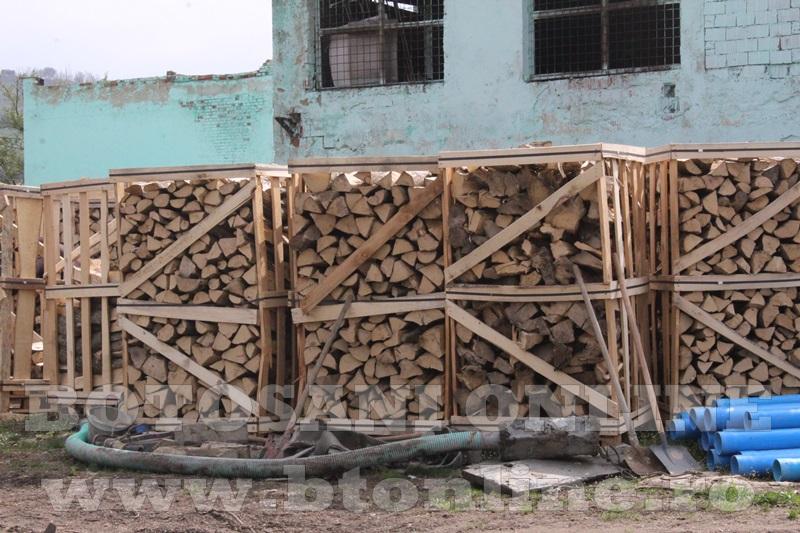 pomirla, lemn de foc (3)