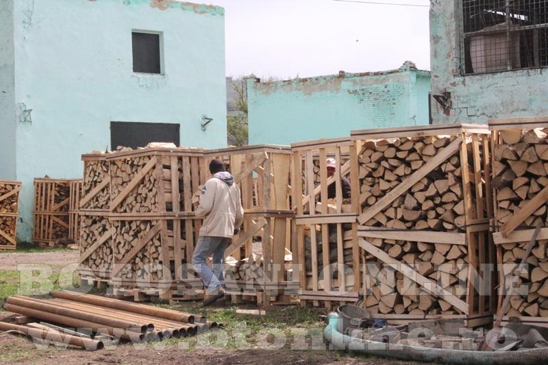 pomirla, lemn de foc (4)