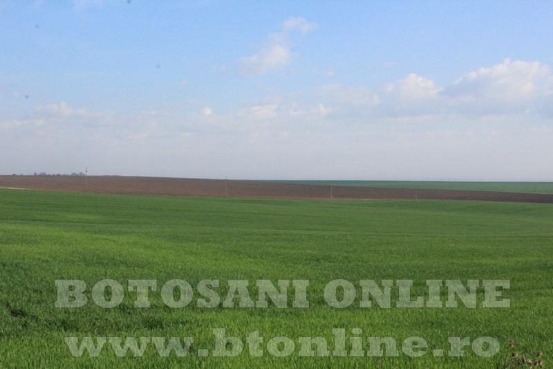 teren agricol doru andrici2