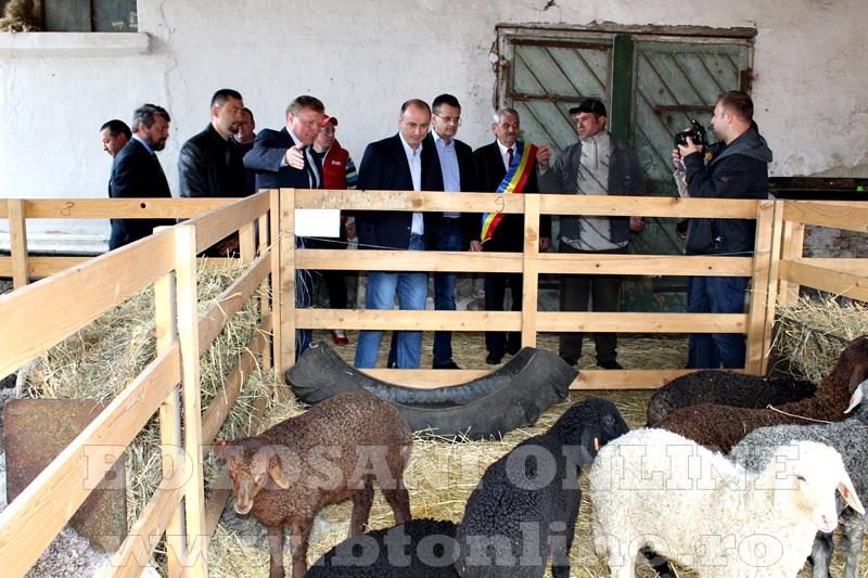 Targ Popauti, ministrul agriculturii (17)