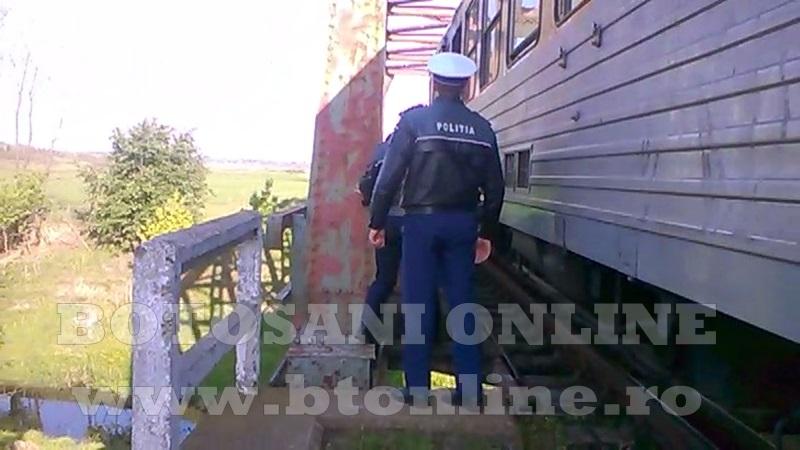 accident, calcat de tren (2)