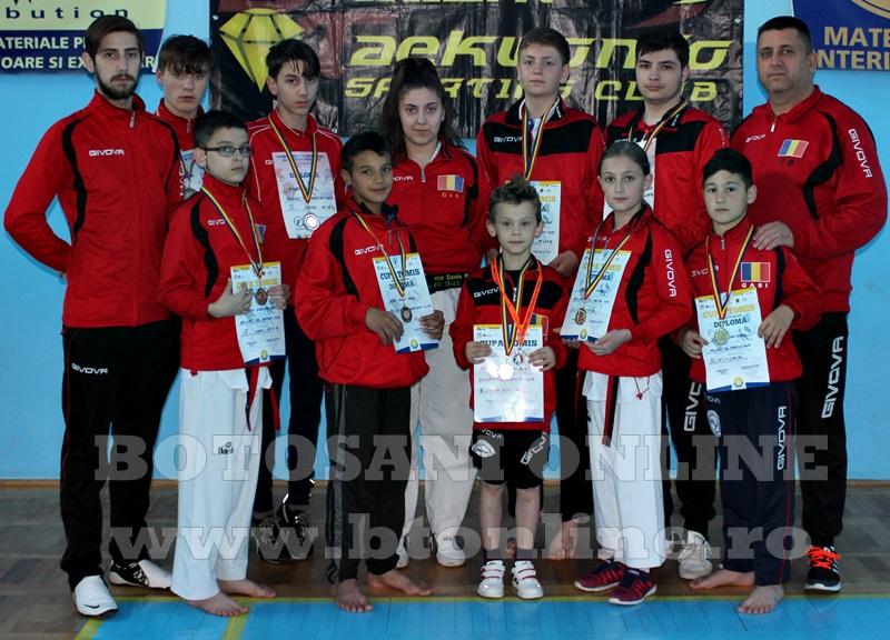 taekwondo brilliant