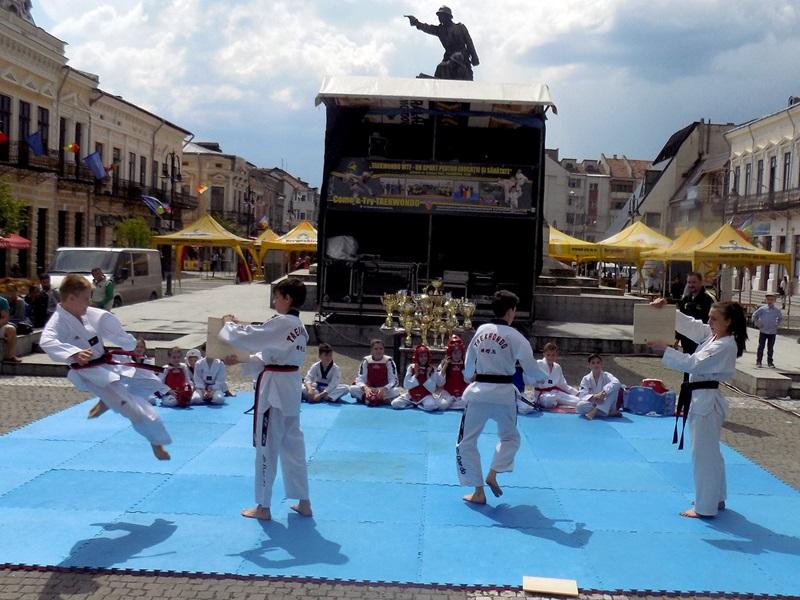 taekwondo demonstratie (5)