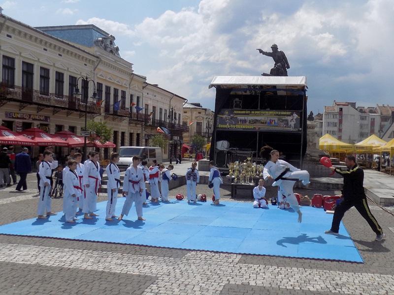 taekwondo demonstratie (7)