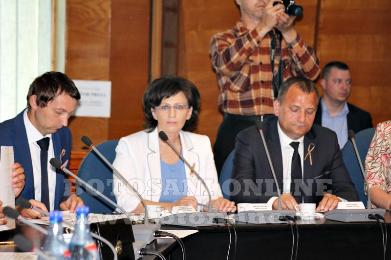 consiliul judetean alegeri presedinte (14)