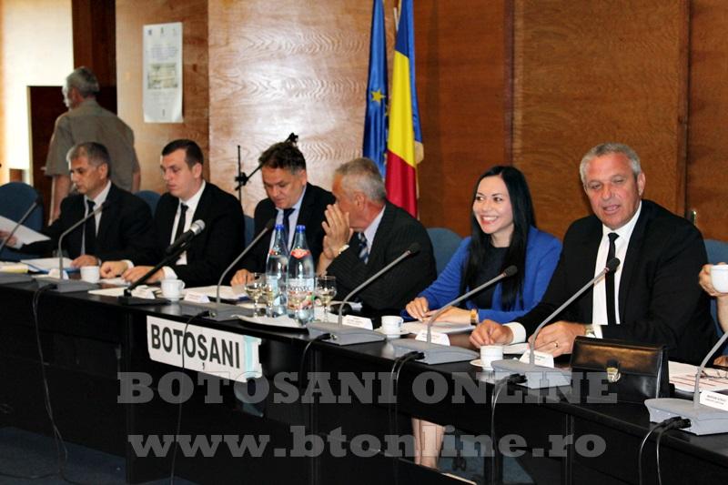 consiliul judetean sedinta fara liberali  (1)