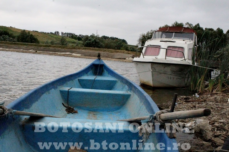 Iaz Vladeni, Botosani (5)