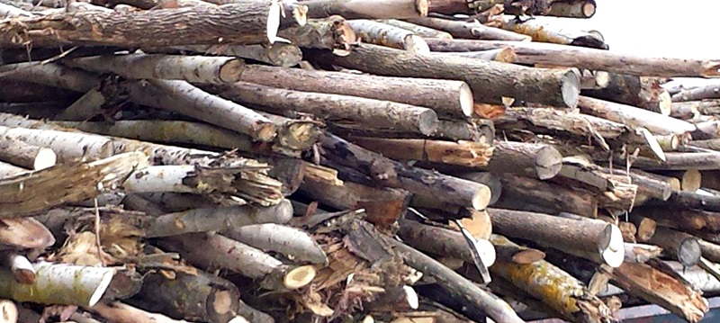 lemne-de-foc