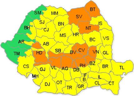 cod-portocaliu1