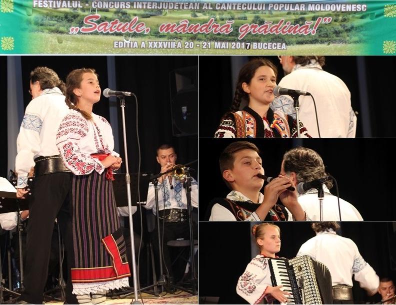 festival satule mandra gradina bucecea 2017 (0)