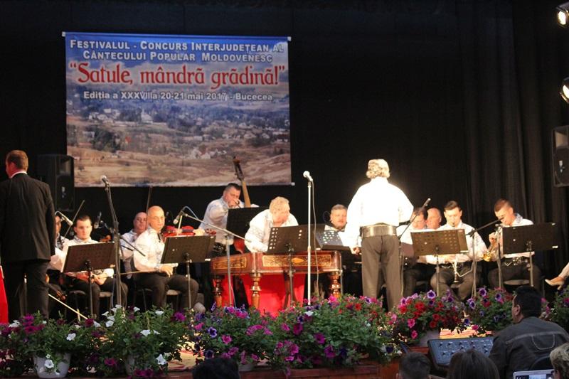 festival satule mandra gradina bucecea 2017 (1)