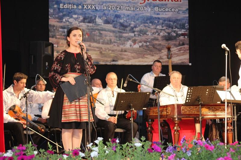 festival satule mandra gradina bucecea 2017 (2)