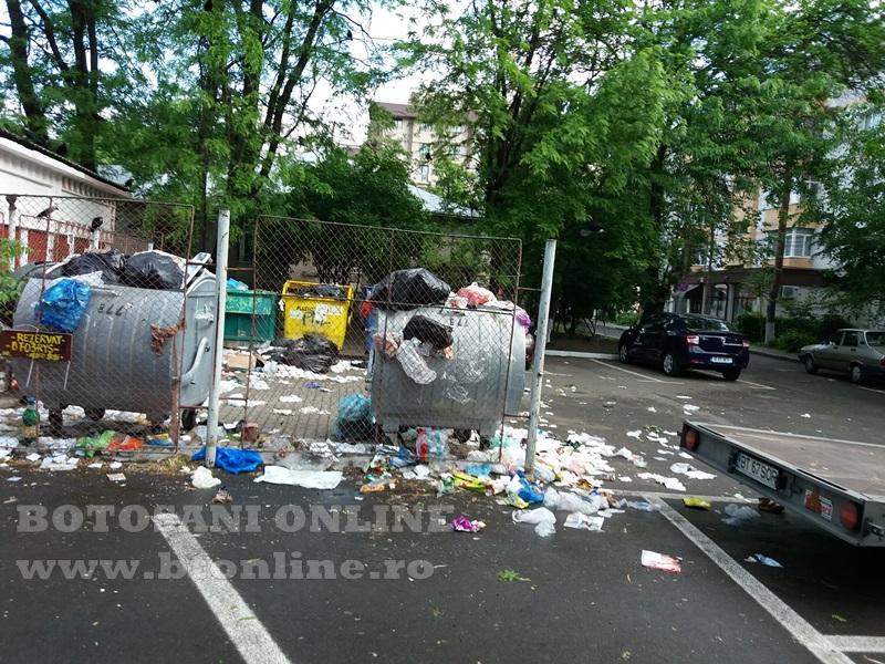 platforma de gunoi in botosani (1)