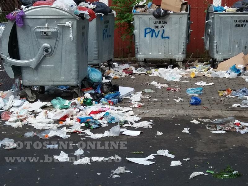 platforma de gunoi in botosani (4)