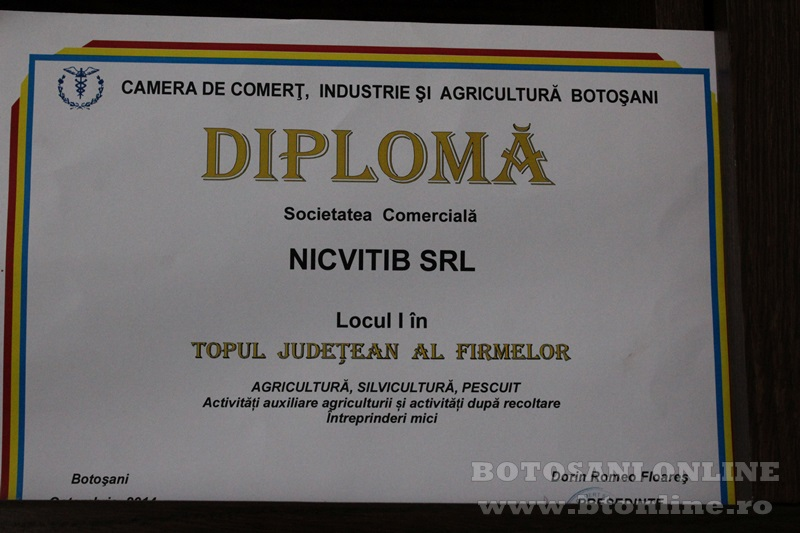 nicvitib tiberiu nichiteanu (13)