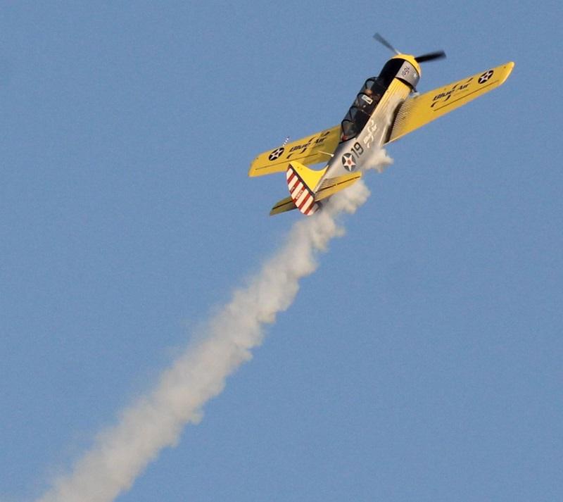 show aviatic suceava (79)