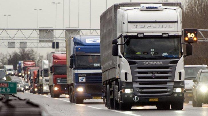 camioane transportatori