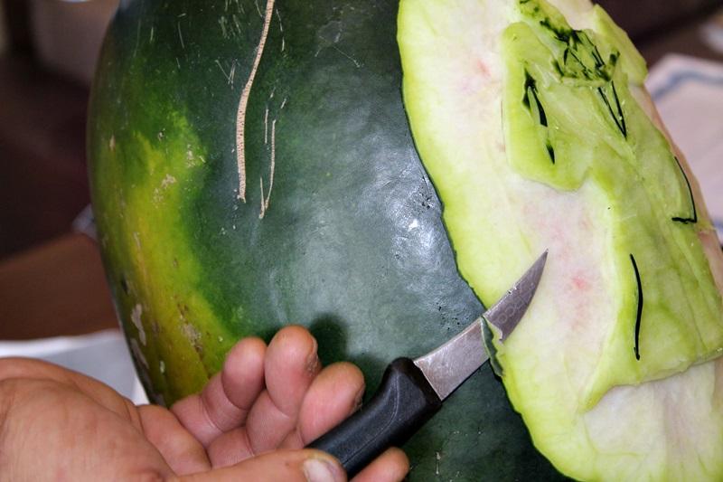 constantin pocai, sculptor in fructe si legume (16)
